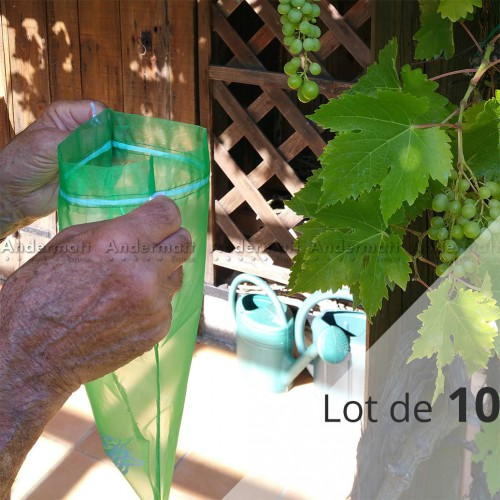 Sachets de protection des grappes de raisin (lot de 10) - Andermatt France