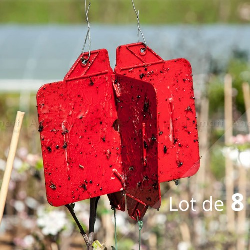 Rebell® contre ravageurs du bois (Lot de 8 pièges croisés) - Andermatt France