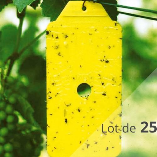 Rebell® giallo (Lot de 25 pièges croisés) - Andermatt France