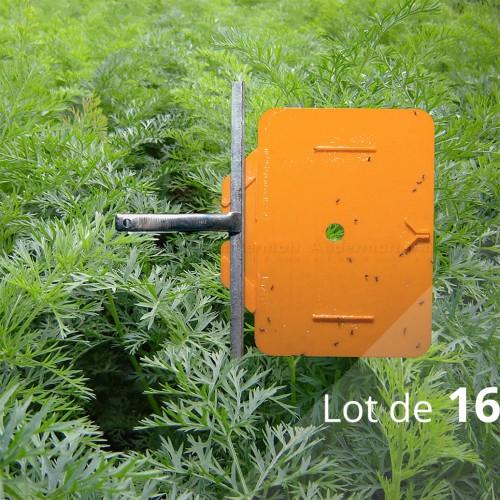 Rebell® contre mouche de la carotte (Lot de 16 pièges croisés) - Andermatt France