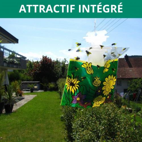 Piege insecte