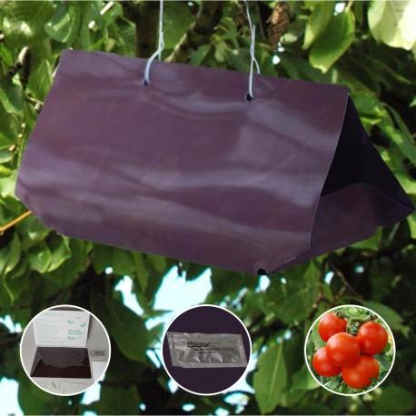 PheroNorm® - Kit PheroNorm® Mineuse de la tomate - piège Delta - Andermatt France