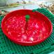 kit_pheromone_watertrap_mineuse_de_la_tomate