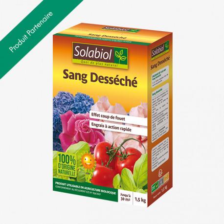 sang_seche
