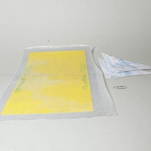 Pièges phéromones - Kit PheroNorm® Chrysomèle des racines du maïs M + F - Andermatt France