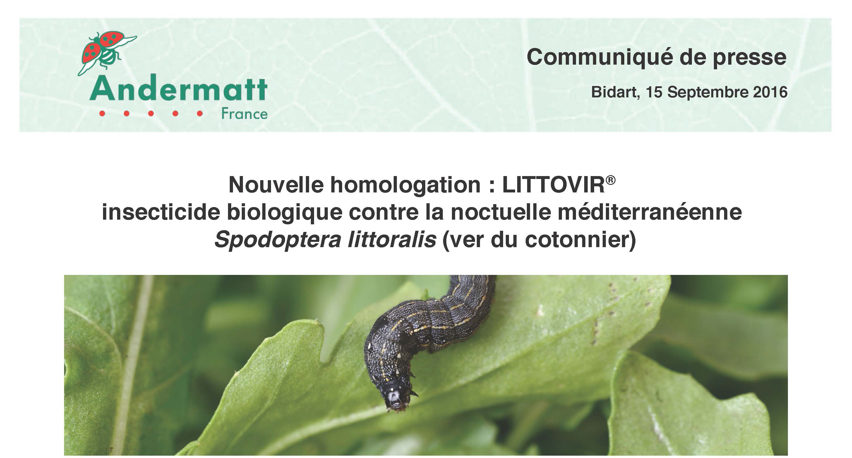 Communique presse LittovirAndermatt-France