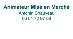 Contacter Antonin Chauveau