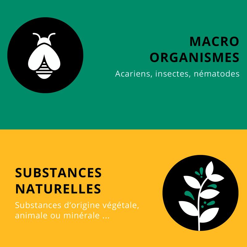 Le Biocontrôle expliqué en infographie par Andermatt France